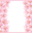 sakura cherry blossom border vector image
