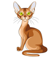 red cat Abyssinian with flashing amber eyes vector image