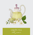 colorful drawing of glass teapot with strainer vector image vector image