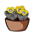 flowering plant in a clay pot element of home vector image vector image