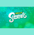 hello summer typography on abstract green vector image