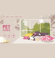 landing page for pet hotel happy dog vector image