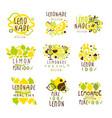 lemonade set for label design colorful vector image