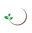 organic logo with green leaves vector image vector image