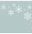 Snowflakes Christmas decorations vector image vector image