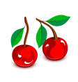 Cartoon cherries vector image