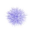 fresh spring blue flower vector image