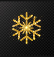 glitter golden snowflake glowing gold snowflakes vector image vector image