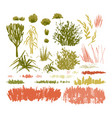 graphic collection abstract stainy plants vector image