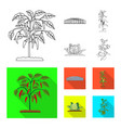 isolated object of greenhouse and plant icon vector image