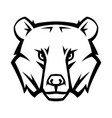 mascot stylized bear head vector image vector image