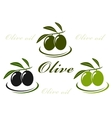 olive set vector image vector image