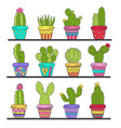 set of isolated cactus in pots on shelf vector image