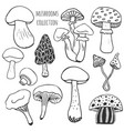 hand drawn mushrooms collection doodle set with vector image