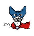 cat hero portrait with mask and hero star vector image