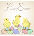 chickens and eggs vector image
