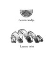 lemon twist and wedge vector image vector image