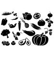 Set of different fresh vegetables vector image vector image