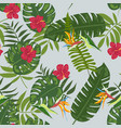 tropical leaves and flowers pattern vector image