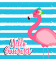 cute pink flamingo summer background vector image vector image