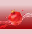 delicious juicy pomegranate in spray of juice vector image vector image