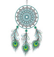 dreamcatcher with feathers vector image vector image