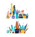 house plants color hand drawn vector image vector image