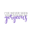I ve never seen you looking gorgeous calligraphic vector image vector image