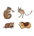 set 1 rodents vector image vector image