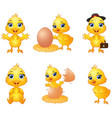 set of cute cartoon baby chick vector image vector image