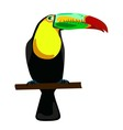 toucan on white background vector image vector image