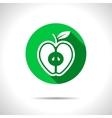 apple icon Eps10 vector image