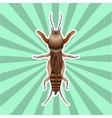 Anatomy of the European mole cricket Sticker vector image vector image