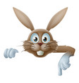 easter bunny pointing at banner vector image vector image