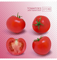 four ripe red tomatoes photo-realistic vector image
