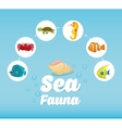 Sea Fauna graphic design vector image vector image
