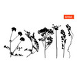 set silhouettes wild flowers vector image vector image