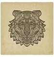 tiger head on grunge background vector image vector image