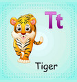 animals alphabet t is for tiger vector image
