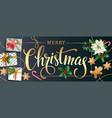christmas design composition of poinsettia fir vector image vector image