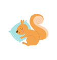cute little squirrel animal sleeping on pillow vector image vector image
