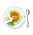 jasmine tea vector image vector image