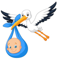 Cartoon bird Stork with baby vector image vector image
