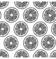 pattern with citrus vector image vector image