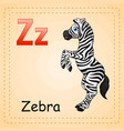 animals alphabet z is for zebra vector image vector image
