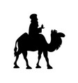 cartoon bactrian camel and magi vector image
