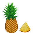 yellow-orange pineapple with green leaves and a vector image