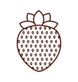 delicious strawberry fruit isolated icon design vector image vector image