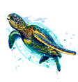 Sea turtle realistic artistic colored drawing