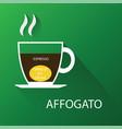 type of coffee affogato coffee vector image